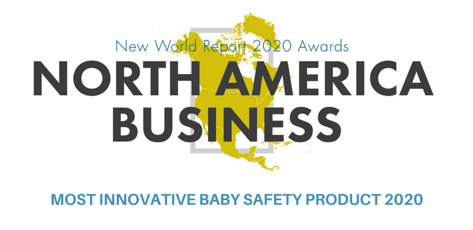Safehead's double win at the 2020 North America Business Awards
