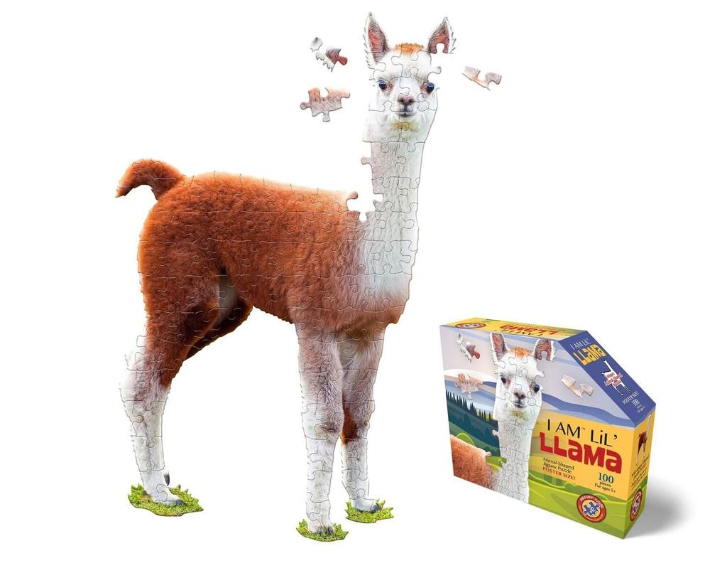 I Am Lil' Llama