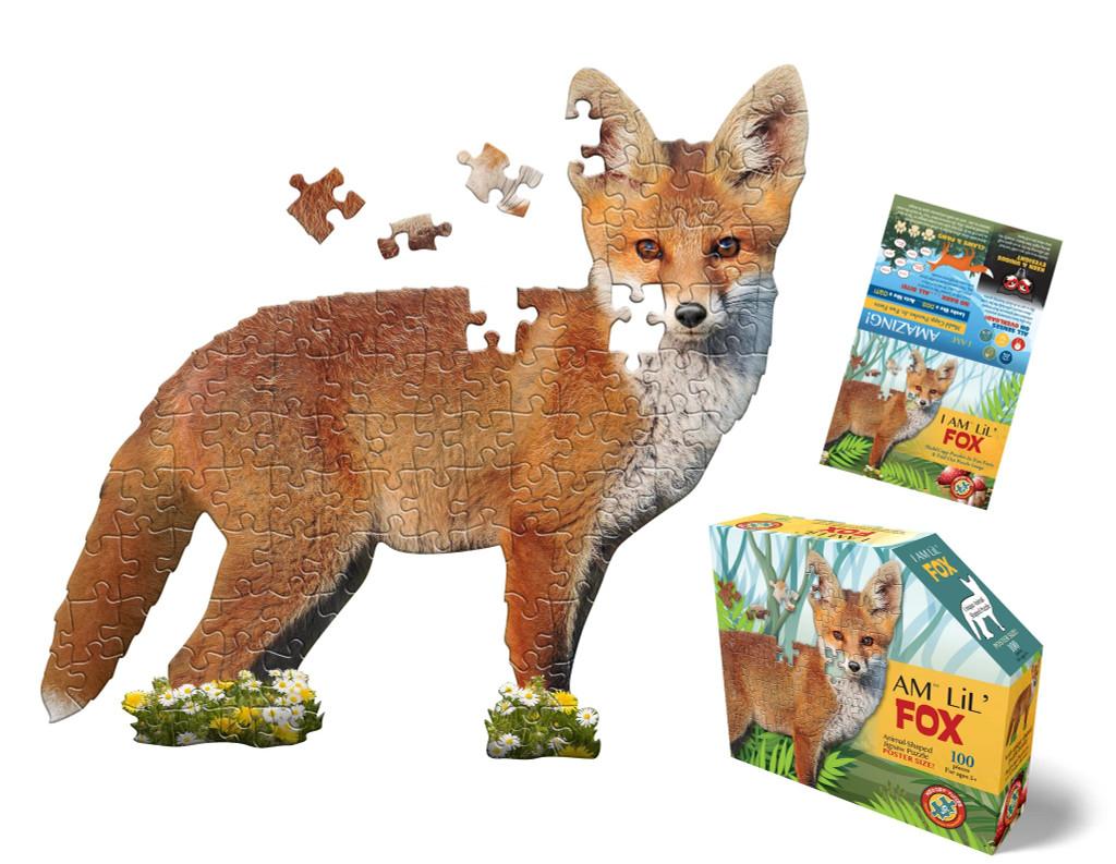 I Am Lil' Fox