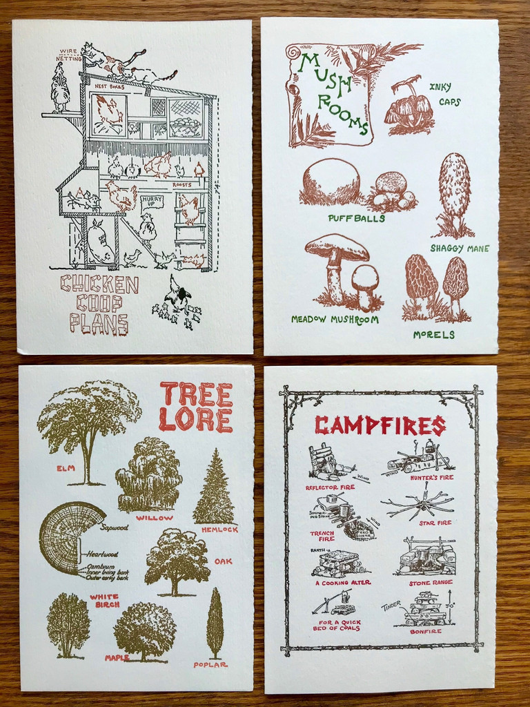 Outdoor Life Card Set