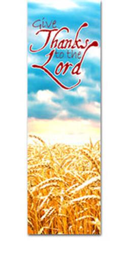 Harvest Field - Fall-HB004