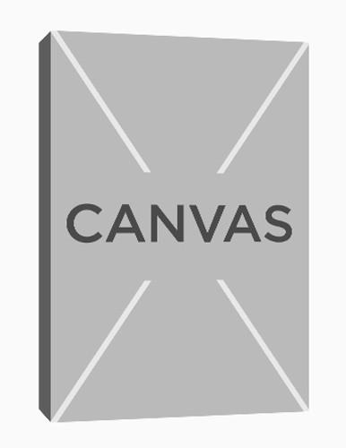 custom canvas decor