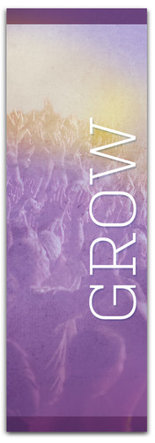 CN003 Grow Purple