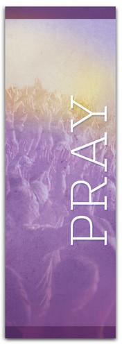 CN004 Pray Purple