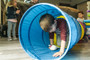 Find Me 6FT Tunnel - Blue / Red / Yellow