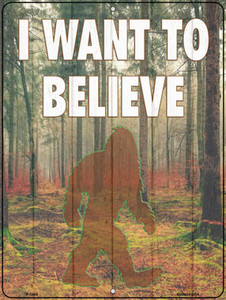 I Want to Believe Wholesale Novelty Metal Parking Sign