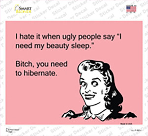 I hate when ugly people say Wholesale Novelty Rectangle Sticker Decal