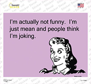 Im Actually Not Funny Wholesale Novelty Rectangle Sticker Decal