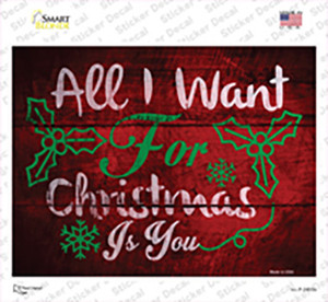 All I Want For Christmas Wholesale Novelty Rectangle Sticker Decal