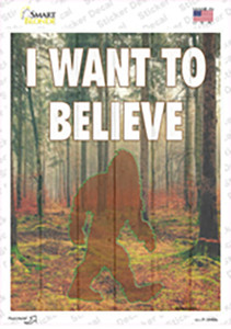 I Want to Believe Wholesale Novelty Rectangle Sticker Decal