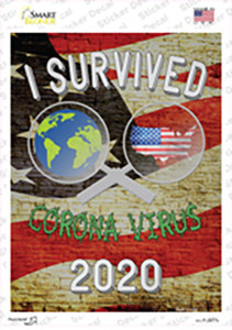 I Survived 2020 Wholesale Novelty Rectangle Sticker Decal