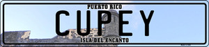Cupey Puerto Rico Wholesale Novelty Metal European License Plate