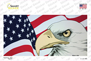 American Flag With Eagle Wholesale Novelty Sticker Decal
