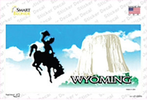 Wyoming State Blank Wholesale Novelty Sticker Decal