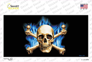 Blue Flame And Crossbones Wholesale Novelty Sticker Decal