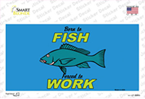 Born To Fish Wholesale Novelty Sticker Decal