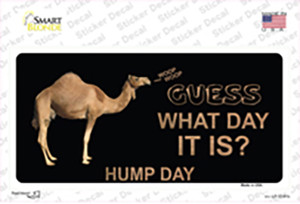 It Is Hump Day Wholesale Novelty Sticker Decal