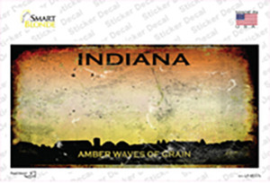 Indiana Rusty State Wholesale Novelty Sticker Decal