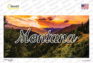 Montana Forest Sunset State Wholesale Novelty Sticker Decal