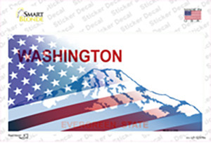 Washington with American Flag Wholesale Novelty Sticker Decal