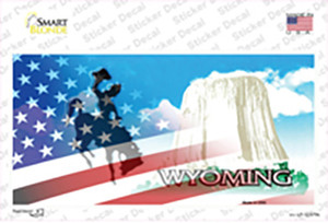 Wyoming with American Flag Wholesale Novelty Sticker Decal