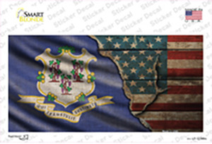 Connecticut/American Flag Wholesale Novelty Sticker Decal