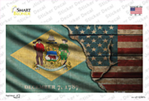 Delaware/American Flag Wholesale Novelty Sticker Decal