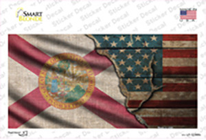 Florida/American Flag Wholesale Novelty Sticker Decal