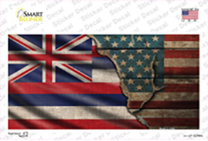 Hawaii/American Flag Wholesale Novelty Sticker Decal