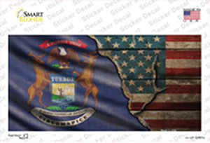 Michigan/American Flag Wholesale Novelty Sticker Decal