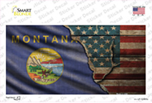 Montana/American Flag Wholesale Novelty Sticker Decal