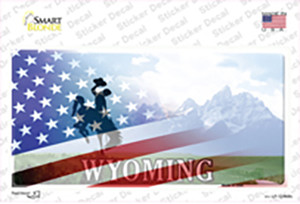 Wyoming Cowboy American Flag Wholesale Novelty Sticker Decal
