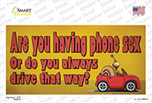 Are You Having Phone Sex Wholesale Novelty Sticker Decal