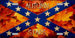 Autumn Stars Wholesale Novelty Metal License Plate