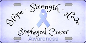 Esophageal Cancer Ribbon Novelty Wholesale Metal License Plate