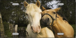 Horses Sweet On Each Other Wholesale Metal Novelty License Plate LP-2024