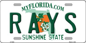 Rays Florida State Background Wholesale Metal Novelty License Plate