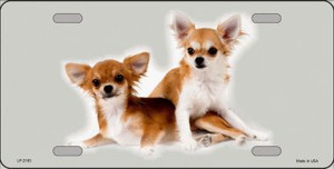 Chihuahua Dog Wholesale Metal Novelty License Plate
