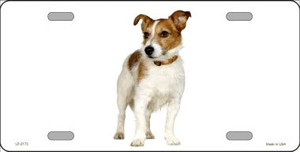 Jack Russell Terrier Dog Wholesale Metal Novelty License Plate