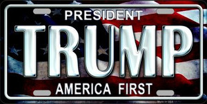 Trump America First Wholesale Metal Novelty License Plate