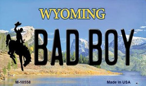 Bad Boy Wyoming State License Plate Wholesale Magnet
