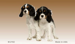 Cavalier King Charles Spaniel Wholesale Magnet M-2162
