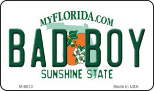 Bad Boy Florida State License Plate Wholesale Magnet M-6030