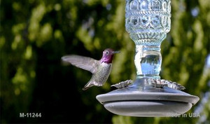 Hummingbird - At Feeder Novelty Wholesale Magnet M-11244