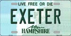 Exeter New Hampshire State Wholesale License Plate LP-11143