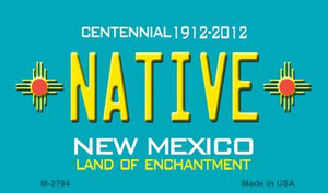 Native New Mexico Novelty Wholesale Magnet