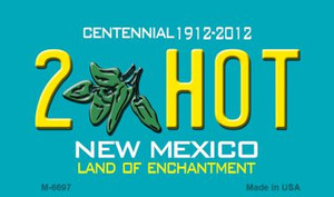2 Hot New Mexico Novelty Wholesale Magnet