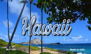 Hawaii Palm Trees Wholesale Magnet M-11595