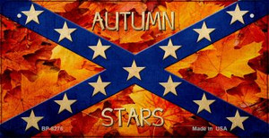 Autumn Stars Novelty Wholesale Bicycle Plate BP-8276