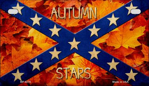 Autumn Stars Novelty Wholesale Motorcycle License Plate MP-8276